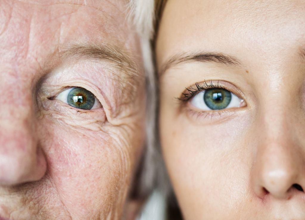 Family generation cataract link
